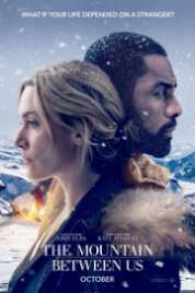 The Mountain Between Us 2017 BRRip XviD web-dl movie torrent download